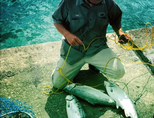 Fishing – Port Washington, WI